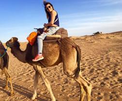 Krustal montada en un camello