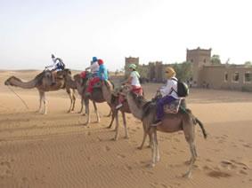 Grupo de jóvenes montados en camello