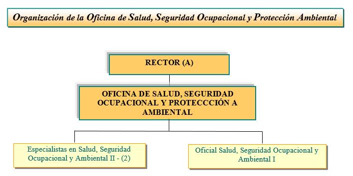 Organigrama de la Oficina de Salud, Seguridad Ocupacional y Protección Ambiental