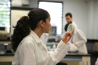 Estudiante en un laboratorio de Microbiología